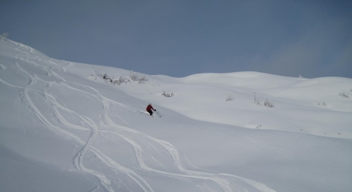 Powder unlimited